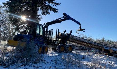 Vente de machine professionnelle pour le transport de bois en forêt